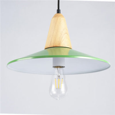 Aluminum- Pendant-Light-WLD071B