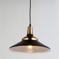 Iron Pendant Light WTY157B