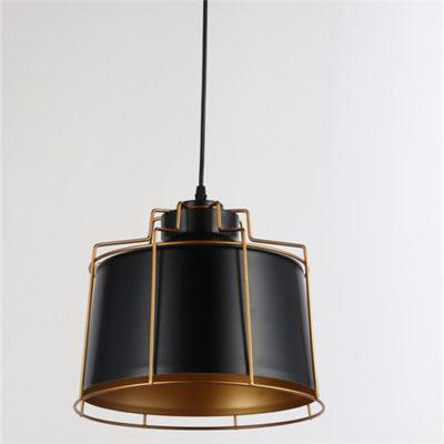 Iron Pendant Light WTY168-