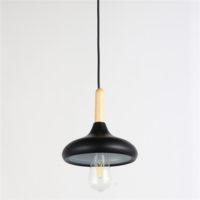 Iron Pendant Light WTY232