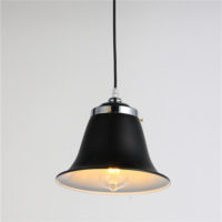 Iron Pendant Light WTY233