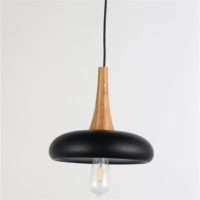 Iron Pendant Light WTY237