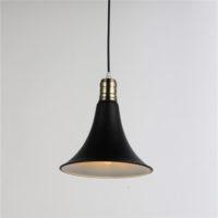 Iron Pendant Light WTY240