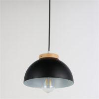 Iron Pendant Light WTY242