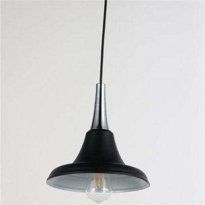 Iron Pendant Light WTY244