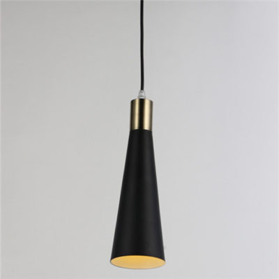 Iron Pendant Light WTY246