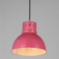 Iron Pendant Light WTY251B