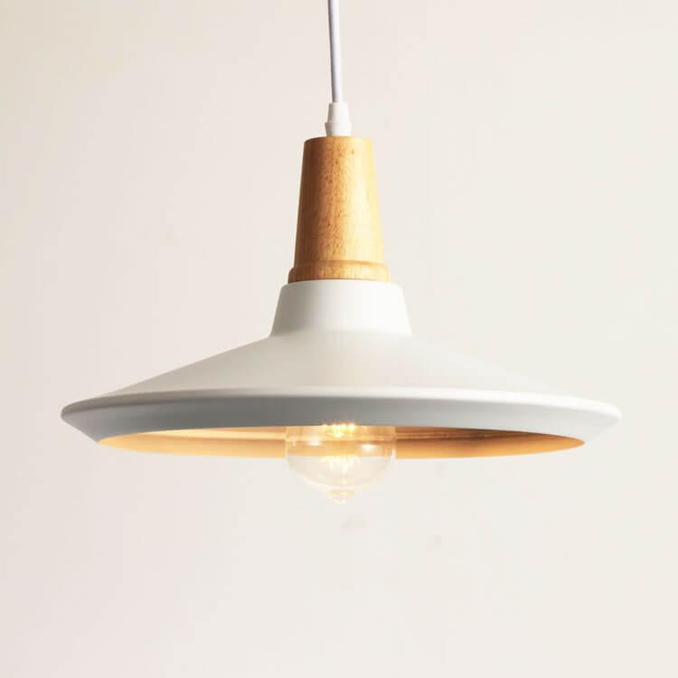 Aluminum Pendant Light WLD121